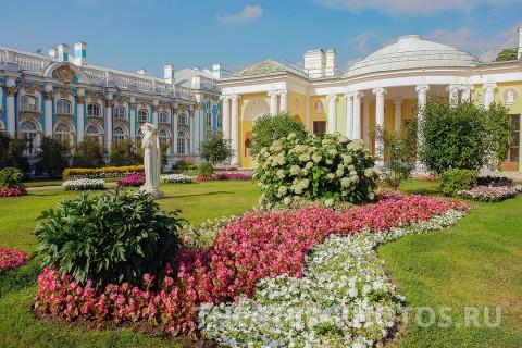 Камеронова галерея Пушкин свадьба (1)