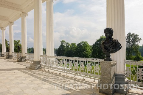 Камеронова галерея Пушкин свадьба (5)