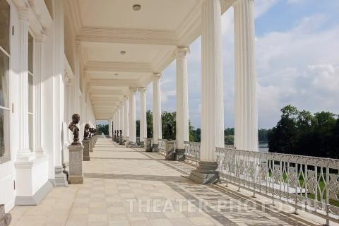 Камеронова галерея Пушкин свадьба (6)