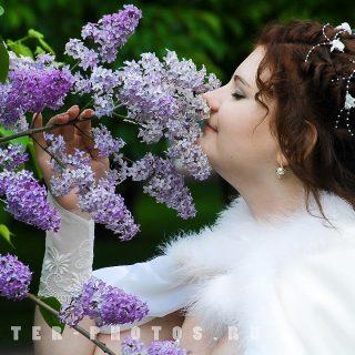 невеста и сирень