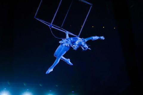 акробатка цирка