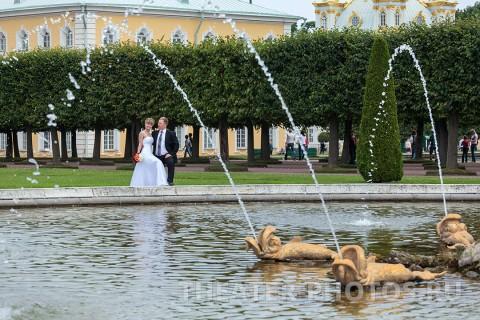 фонтан верхний парк, свадьба