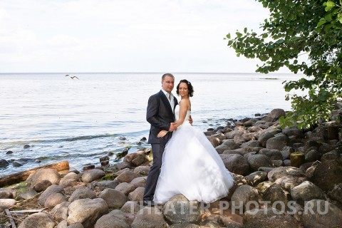 Петродворец свадьба